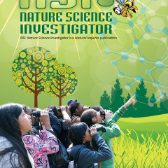 nsi science activity book design